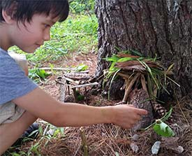 Summer Nature Program for Kids